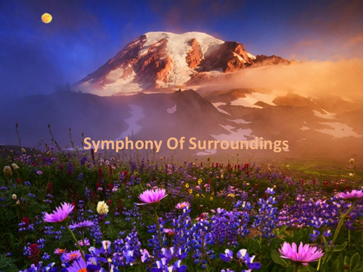Symphony of surroundings